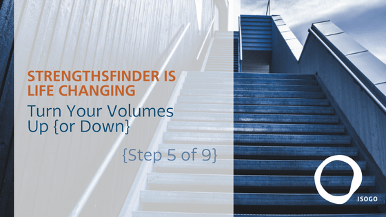 StrengthsFinder is Life Changing | Dial in Your Volume {Step 5 of 9}